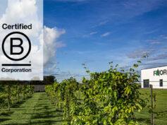Florim ottiene la certificazione B Corp. Un ulteriore traguardo che consolida un modo evoluto di fare impresa